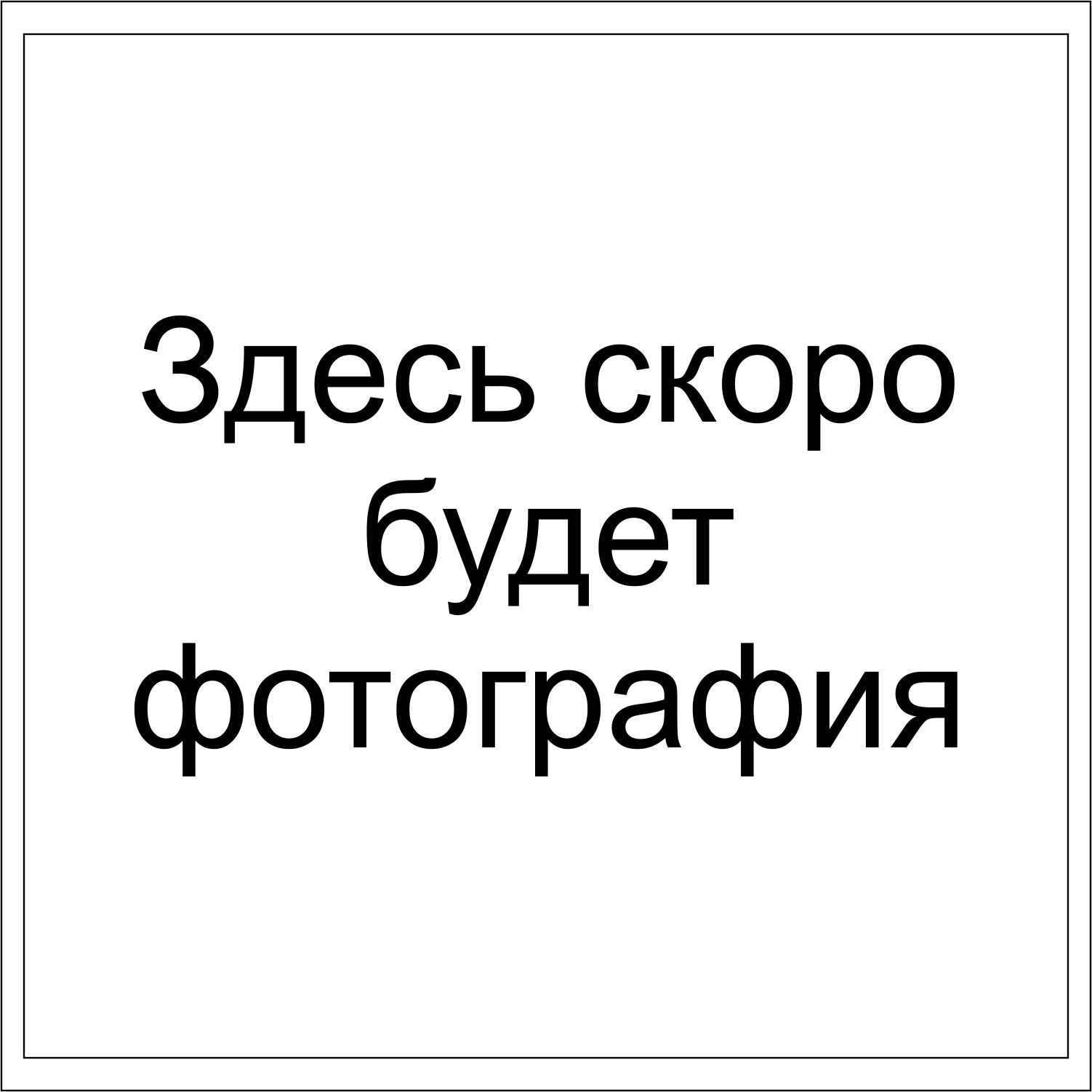 Ветка Гипсофила 5 веток