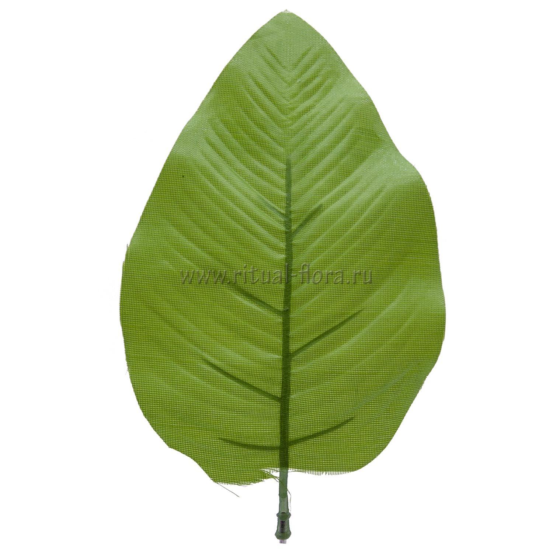 Лист яблони малый №22  ТПА