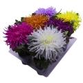 Кашпо цветок в горшке ткань БХН-432_3