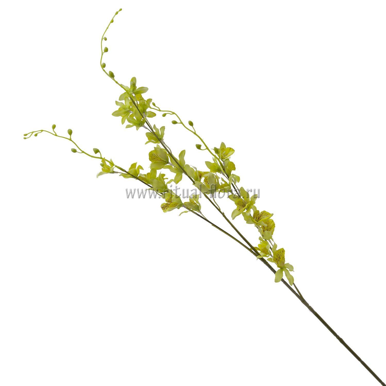 Ветка Мелкоцвет (5шт)