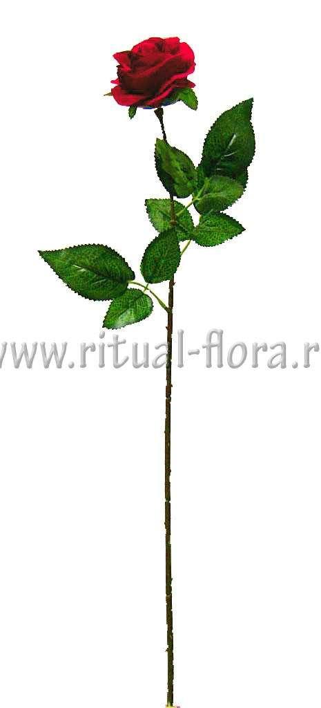 Ветка Розы шелк одиночная