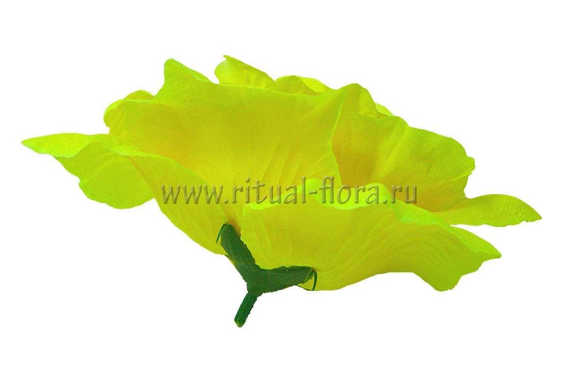 Роза Прелесть Г0337 желтая (1/40)
