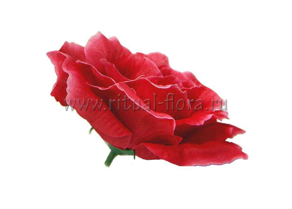 Роза Прелесть Г0337 красная (1/40)