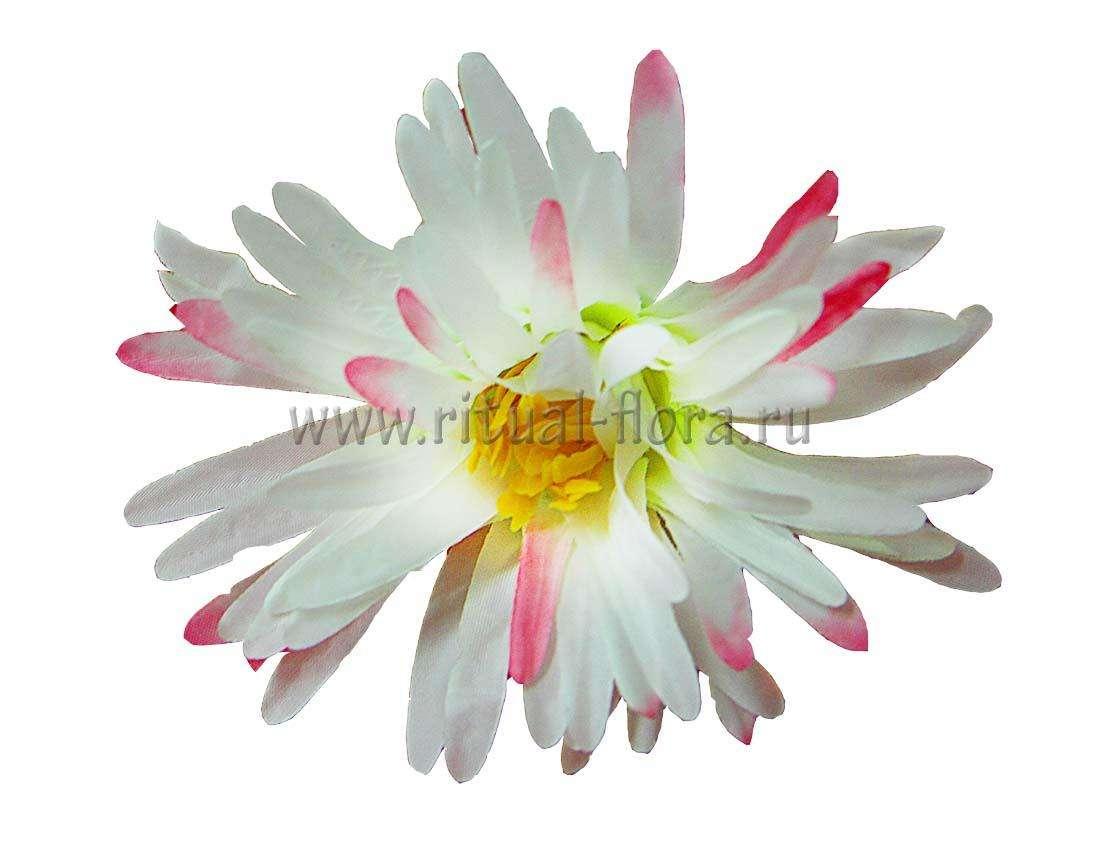 Горный цветок Г4001 белый (50 шт)