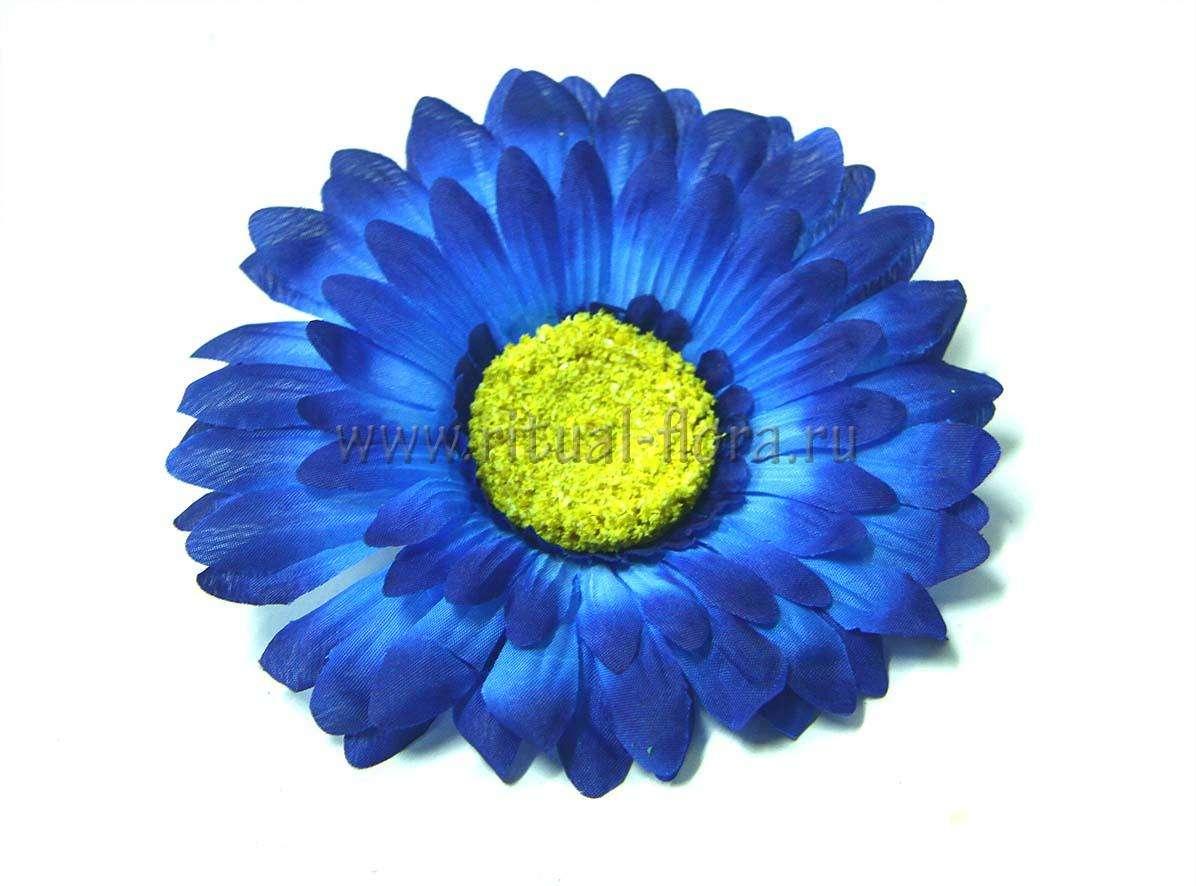 Ромашка махровая Г0407 синяя (20 шт)