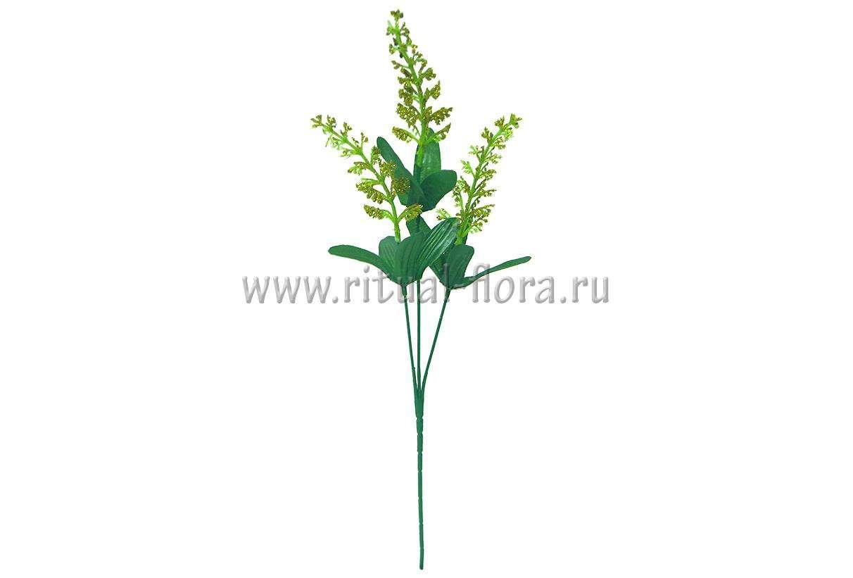 vetka-kukuruza-zolotaya-3g