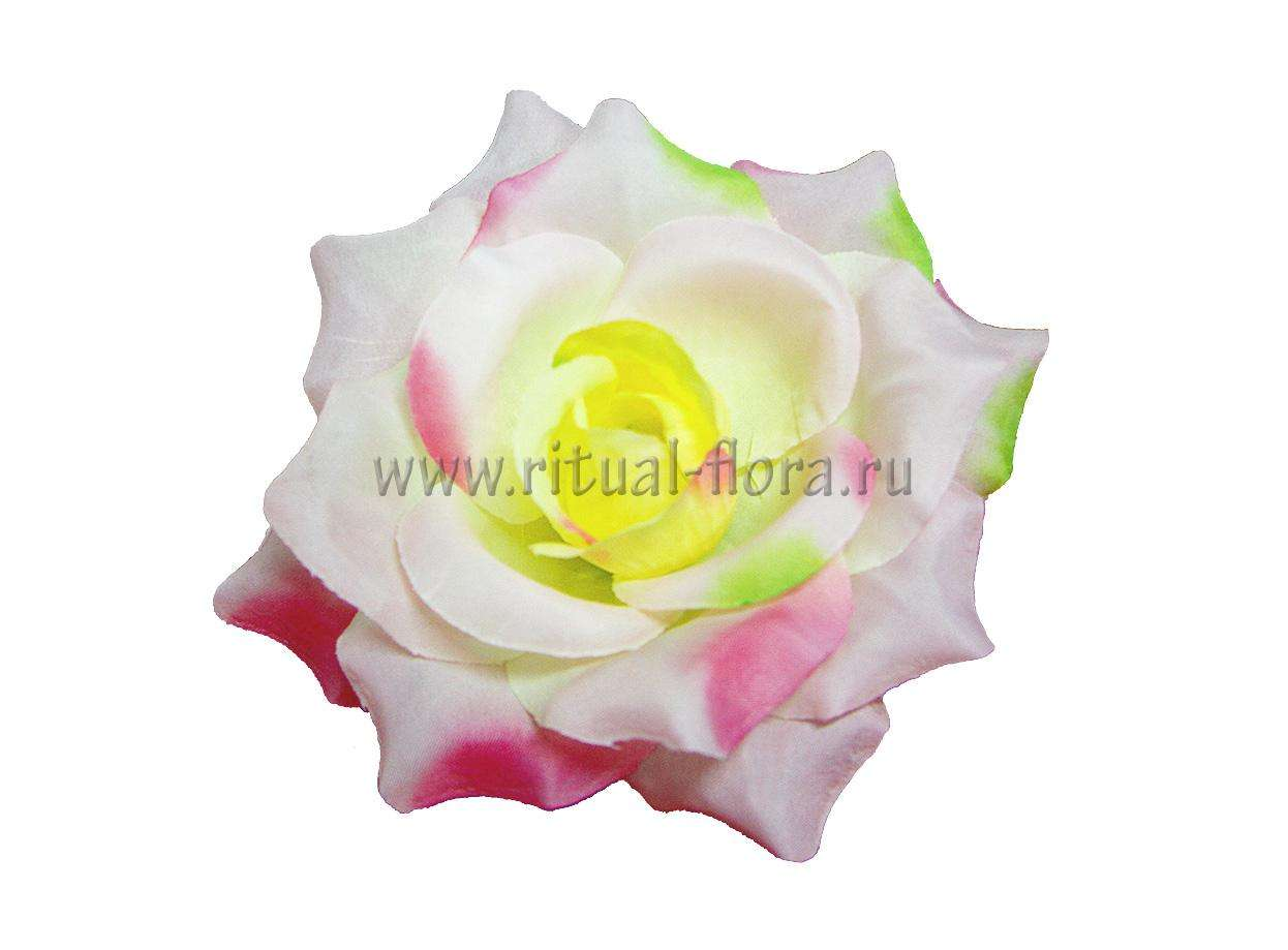 Роза Жемчуг Г0348 разноцвет (1/20)