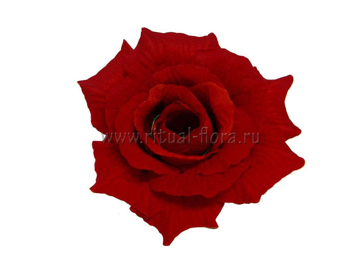 Роза Красота бархатная Г0335 красная