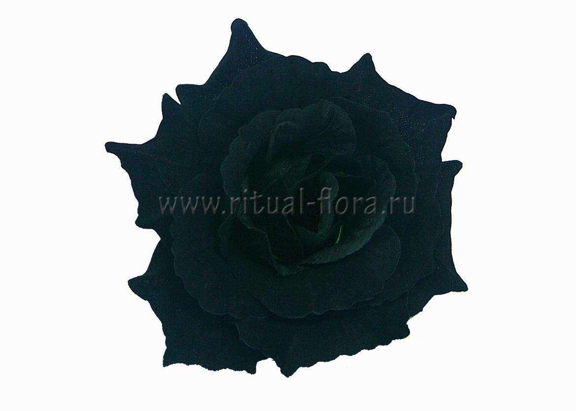 Роза Красота бархатная Г0335 черная