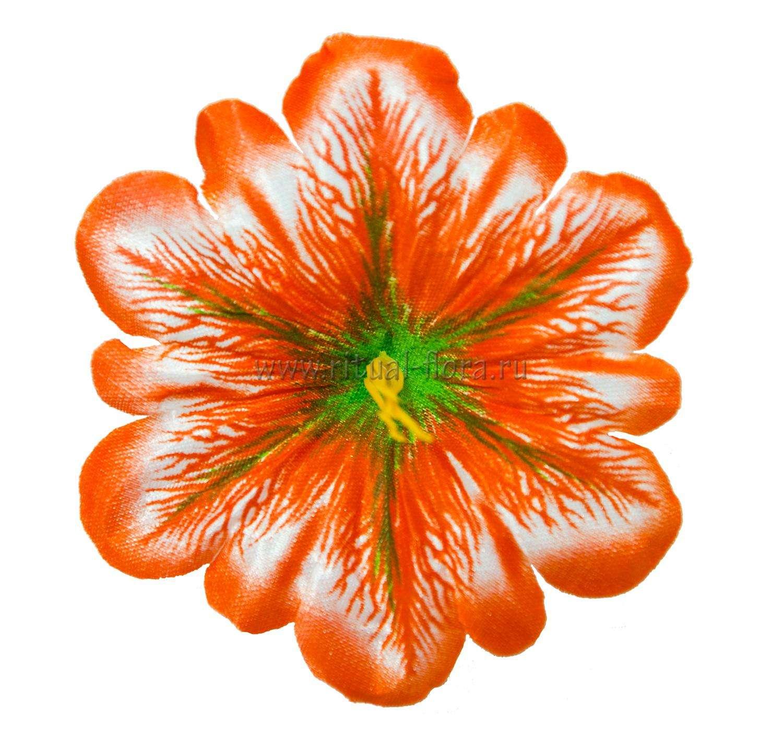 klematis-atlas-d-11-cm-oranjevyy100-sht