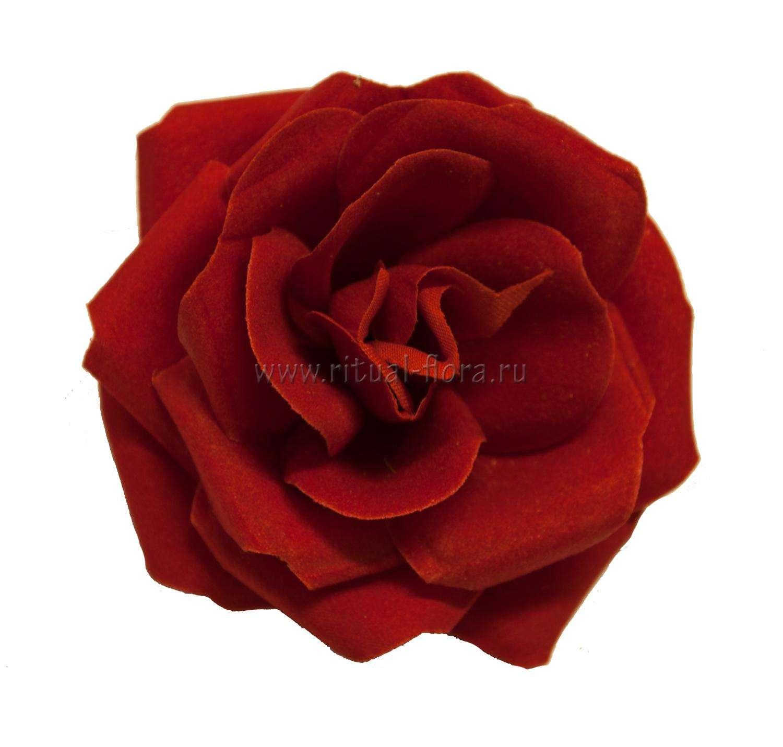 roza-barhat-bella-d-9-sm-
