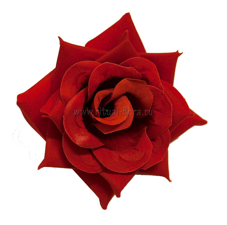 roza-barhat-gledis-d-14-sm-
