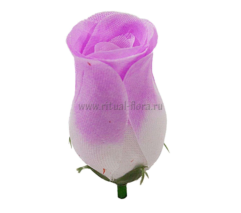 roza-buton-akvarel-1-100-raznotsvet