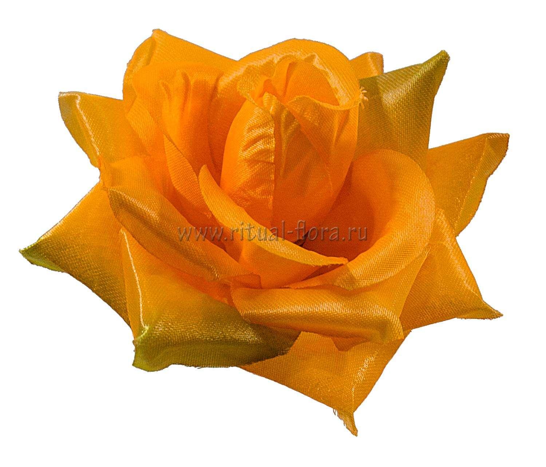 roza-gerda-atlas-d-11-sm-oranjevyy