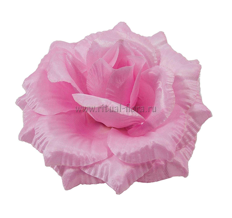 roza-katrin-atlas-d-14-sm-rozovyy