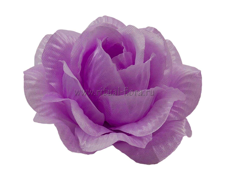 roza-kler-atlas-d-11-cm-fioletovyy-1-40