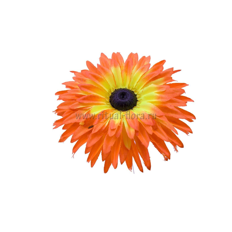 Гербера атлас d-15,5 см оранжевый