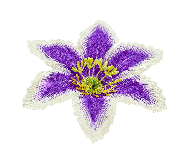 Лилия атлас d-13 см. синяя