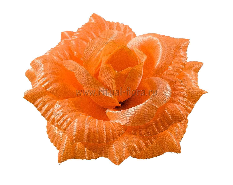 roza-katrin-atlas-d-14-sm-oranjevyy