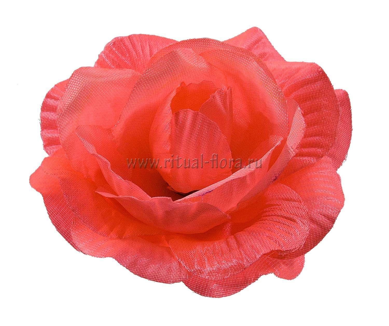 roza-kler-atlas-d-11-cm-rozovyy-1-40