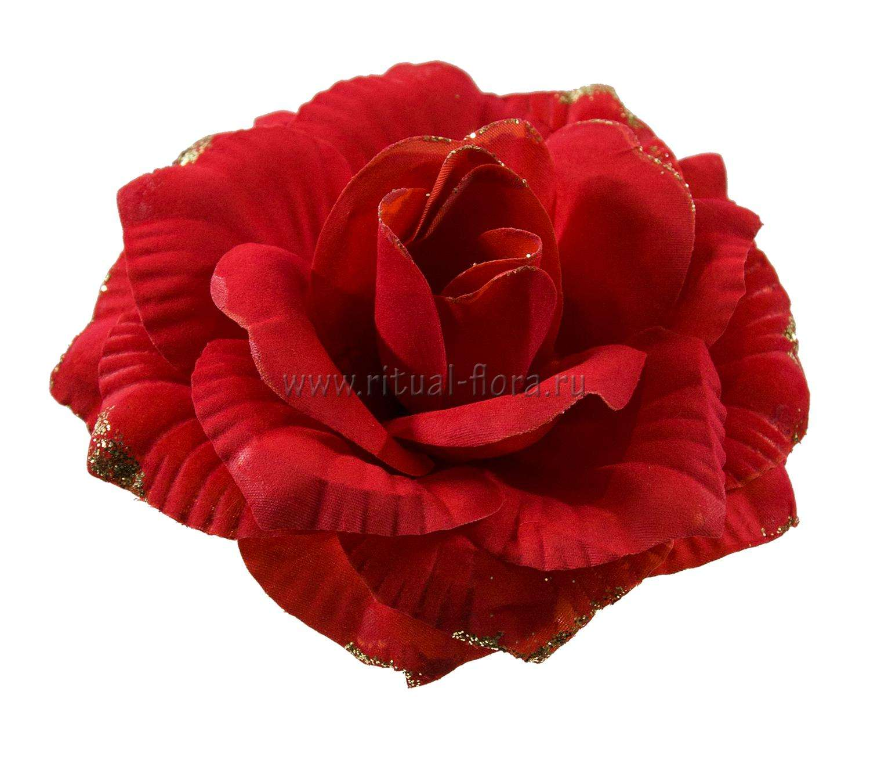 roza-katrin-barhat-zoloto-1-20-