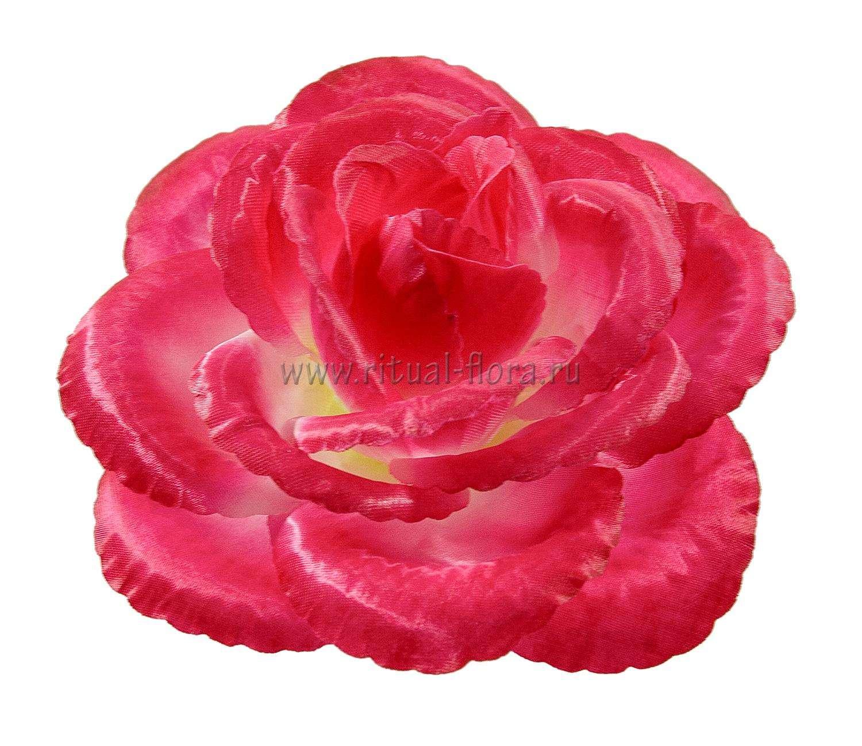 roza-helga-atlas-d-15-sm-1-20-rozovyy