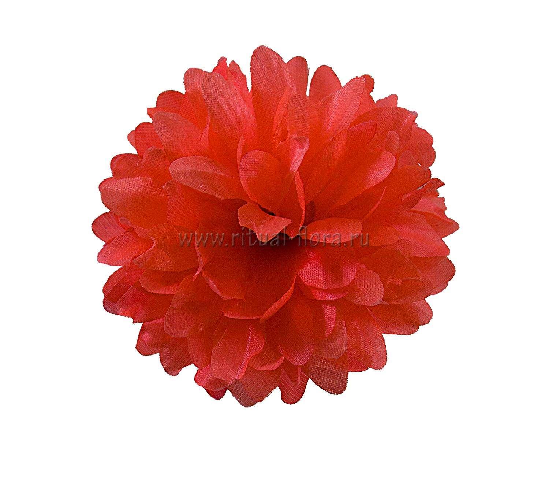 Хризантема №44 атлас d-10 см (1/100)