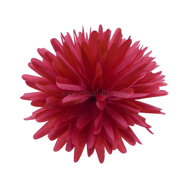Хризантема атлас №12 d-13 см (1/40)