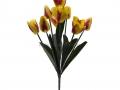 Букет тюльпан 9г БХН-325-9Г_2