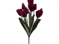 Букет тюльпан 9г БХН-325-9Г_3