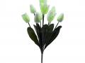 Букет тюльпан 9г БХН-325-9Г_5