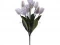 Букет тюльпан 9г БХН-325-9Г_6