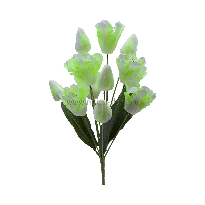 Букет тюльпан 12г БХН-326-12Г