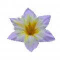 Клематис двухслойный атлас d-13 (1/100)_2