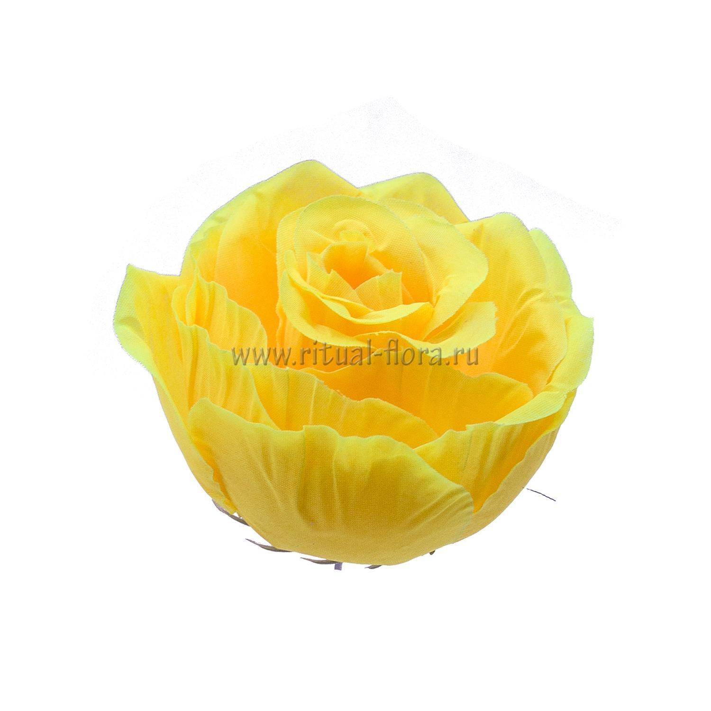 Роза d-9 см (1/40)