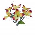 Букет Орхидей 7г. Б-009_3