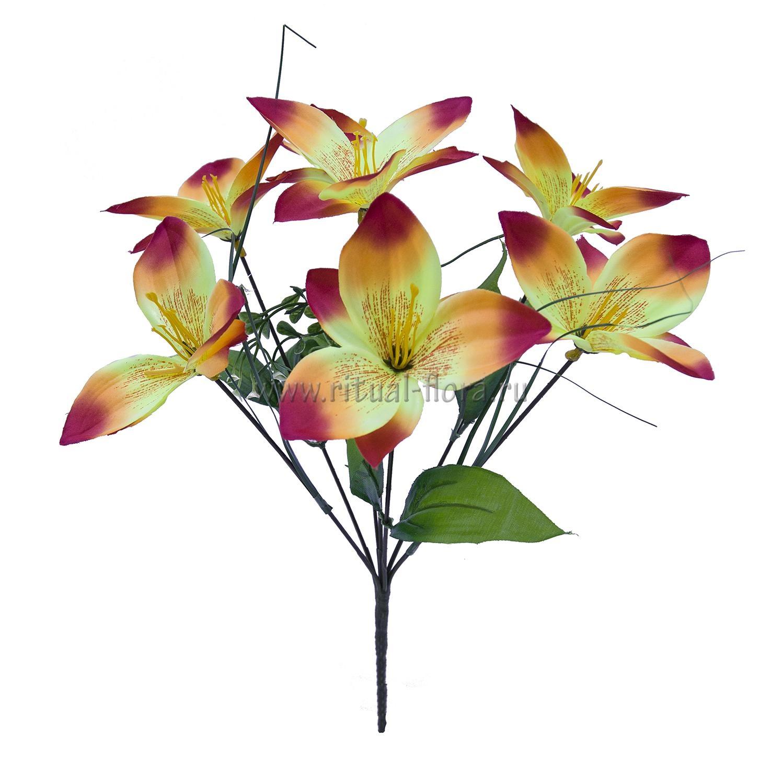 Букет Орхидей 7г. Б-009