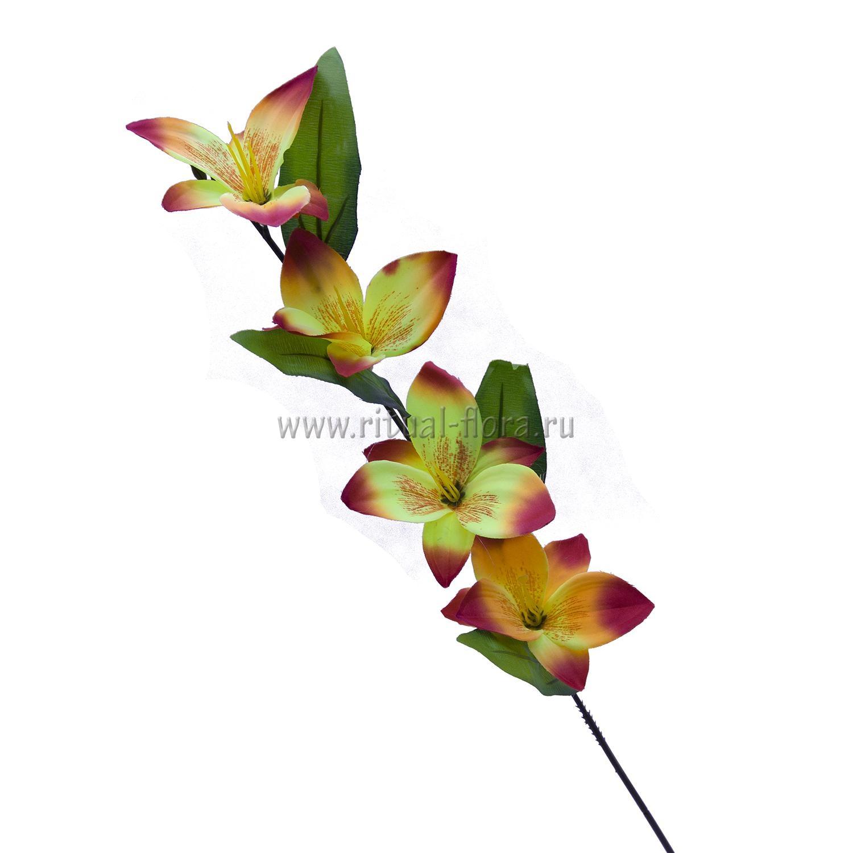 Ветка Орхидеи В-004