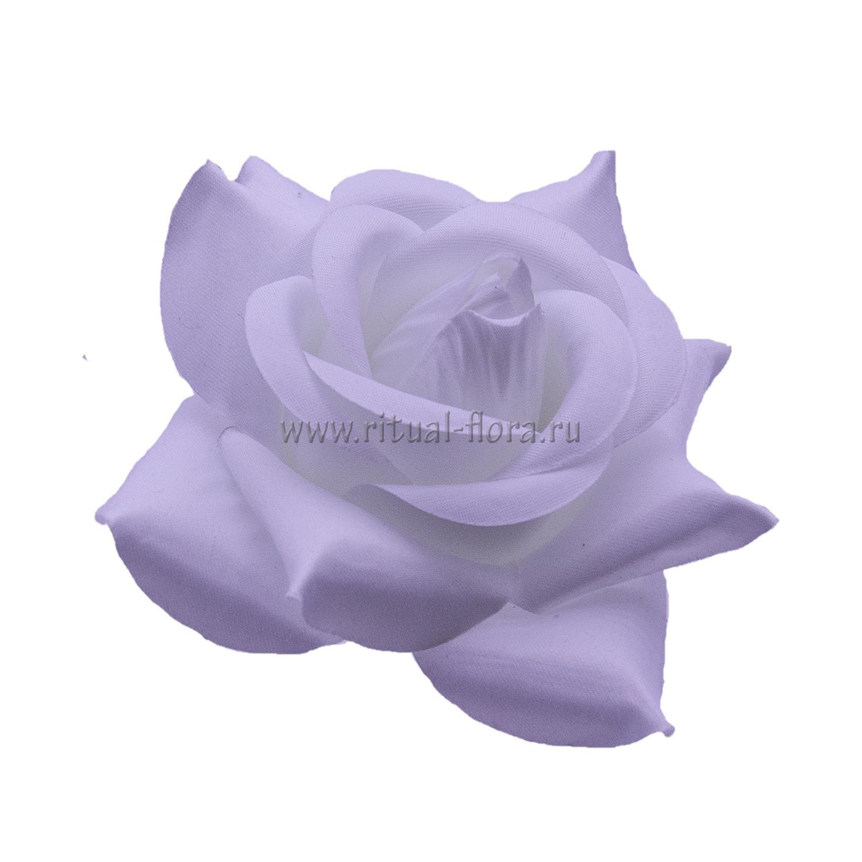 Роза Каролина атлас №2 d-12см.(1/50)