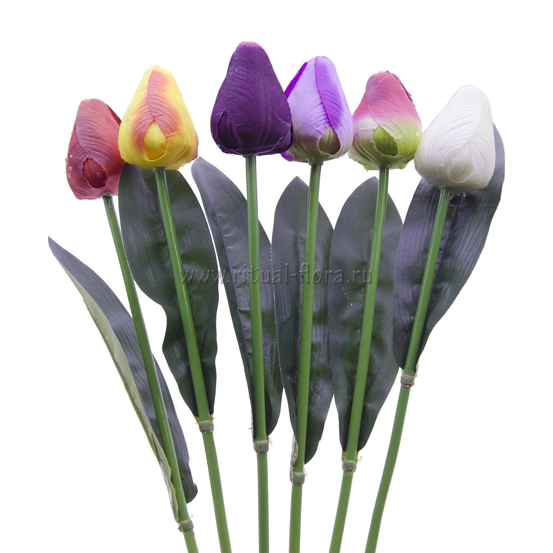 Ветка тюльпан одиночный ВХН-5
